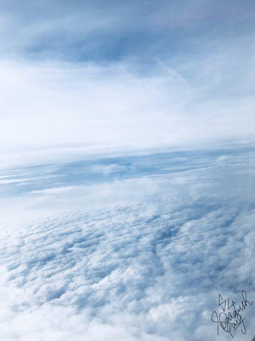 Cloud-Cuckoo Land